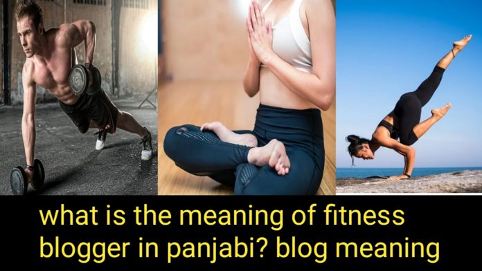 What is the meaning of a fitness blogger in Punjabi?blog meaning