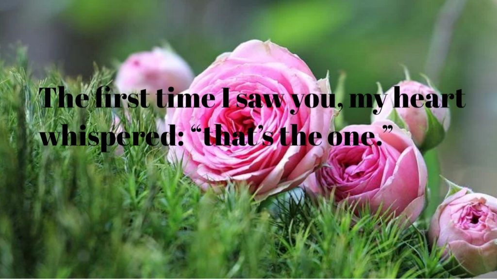 Love quotes | Love quotes in-Valentin | sayings | love-2020