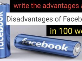 Write the advantages and disadvantages of Facebook in 100 word